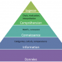 Hierarchie Cognitive